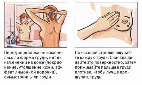 Болит сильно грудь при беременности