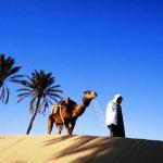 Куда поехать отдыхать в конце апреля - Тунис
