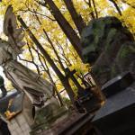 Как часто и когда можно ездить на кладбища к близким