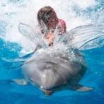 Детский отдых в Евпатории в 2013 году - дельфинарий