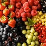 Самые полезные продукты для женского здоровья - ягоды средней полосы