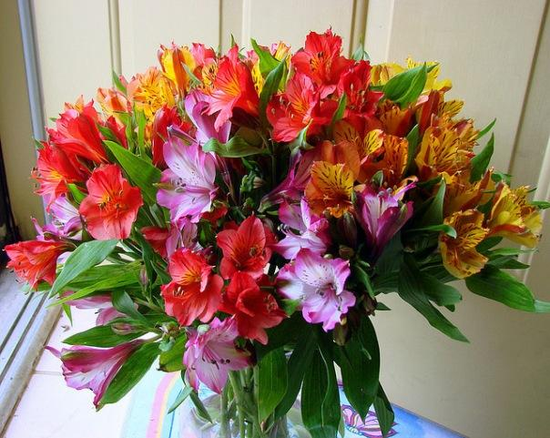 Сохранение цветов подольше