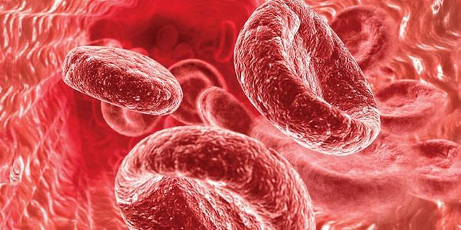 Низкий гемоглобин у беременных