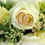 Выбираем букет на свадьбу – хорошие и нежелательные цветы для молодоженов