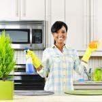 Как отмыть жир на кухонной бытовой технике – лучшие народные и магазинные средства