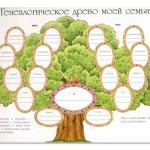 Составляем родословную семьи – виды, полезные сайты и книги в помощь