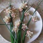 Детский рецепт цветов из сосисок
