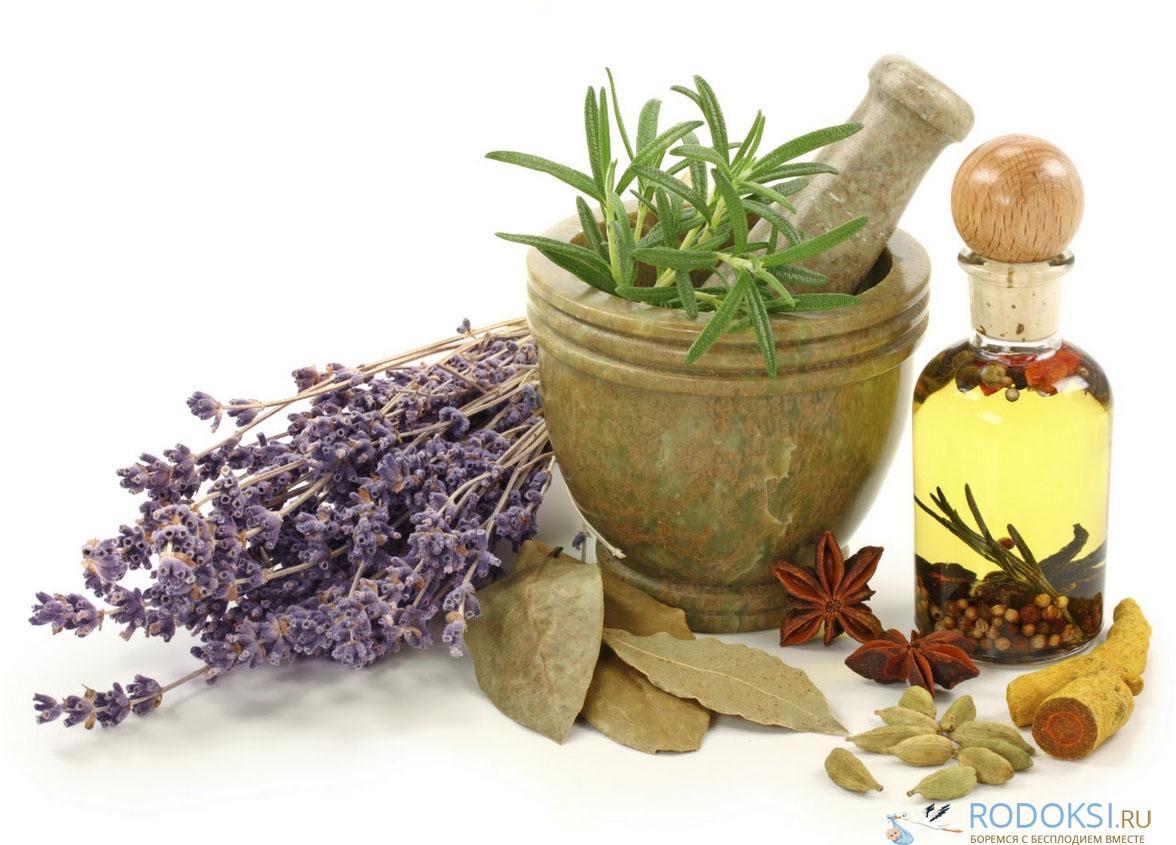 Лечение бесплодия травами, грязями, пиявками и т.д. - все нетрадиционные методы в лечении бесплодия