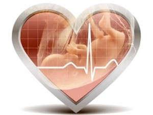 Таблицы норм ЧСС плода по неделям беременности