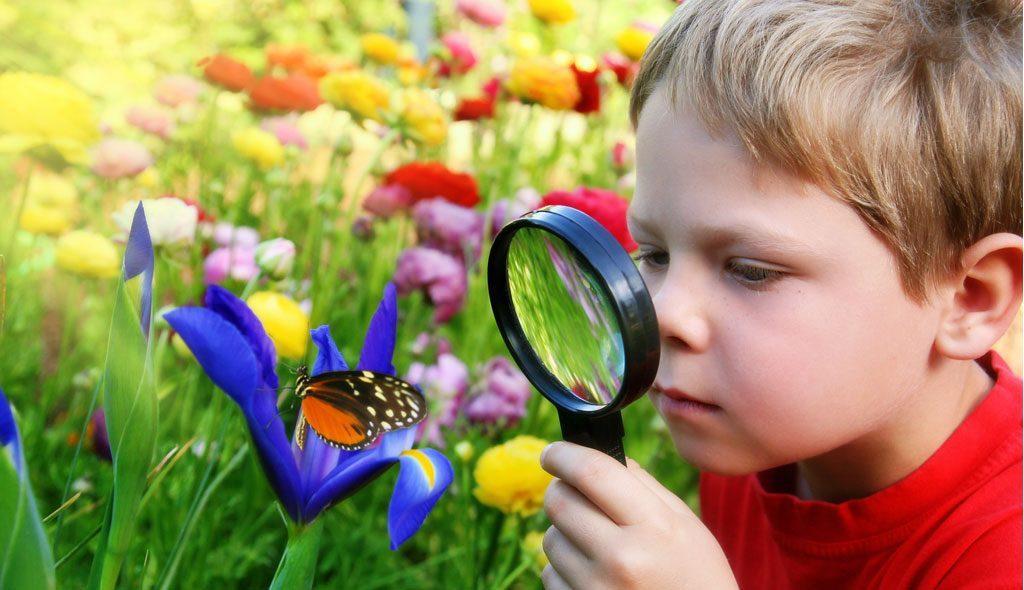 Тематические прогулки с детьми 2-5 лет - изучаем лето