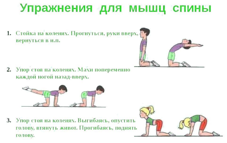 Упражнения для мышц спины и осанки
