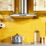 Тысяча и один вид вытяжек для кухни – обзор функций и форм кухонных вытяжек, их плюсов и минусов