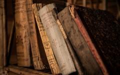 Что больше всего поражает иностранцев в русской литературе и почему она «жива и необходима» для воспитания подростков