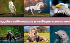 Задайте себе сокровенный вопрос и выберите одно животное – оно даст вам ответ, который вы ищете