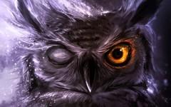 Что Вселенная хочет вам сказать, если вам на глаза часто попадаются эти животные
