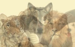 Тест: Первое животное, которое вы увидите, раскроет тайны вашей личности