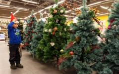 Какая елка лучше к Новому году – искусственная или настоящая?