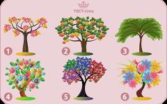Выберите одно дерево и узнайте ваши доминирующие черты характера