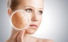 Обезвоженная кожа: причины и уход