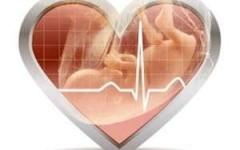 Измерение сердцебиения плода – все нормы в таблицах по неделям беременности