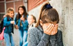 Откуда берётся агрессия в школе – взгляд педагога