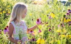 8 шагов к счастью через осознанность