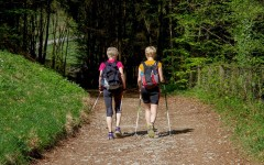 Польза скандинавской ходьбы с палками или как стать на 10 лет моложе с помощью спорта