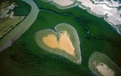 20 восхитительных снимков с высоты птичьего полёта