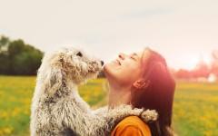 Питомец или ребёнок: почему хозяева собак называют себя мамой и папой?