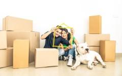 7 секретов переезда — как подготовиться к нему, собрать вещи и переехать без потерь?
