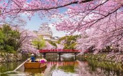 9 доказательств того, что Азия — это другой мир