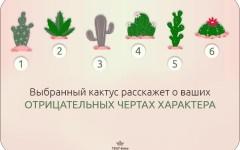 TEST-time! Выбранный кактус расскажет о ваших отрицательных чертах характера