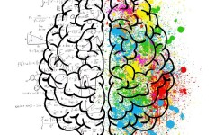 Топ-5 лучших методов прокачки мозга или нейрофитнес в домашних условиях