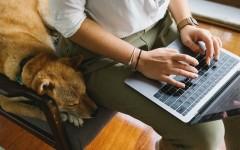Реально ли зарабатывать в интернете: разбираем плюсы и минусы работы на дому для женщин