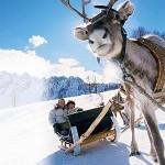 Как отметить Новый Год в Финляндии с детьми?
