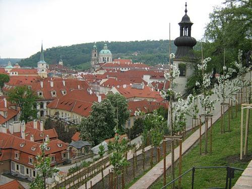 Отпуск в Праге в апреле
