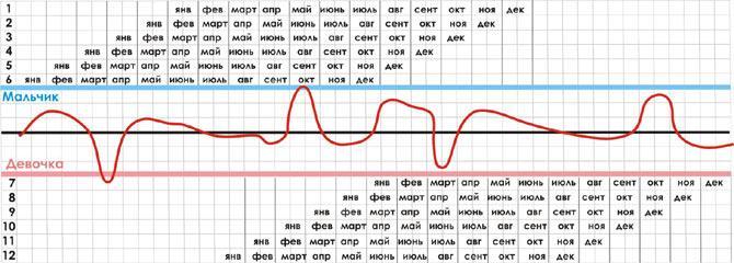 Японский календарь планирования пола ребенка