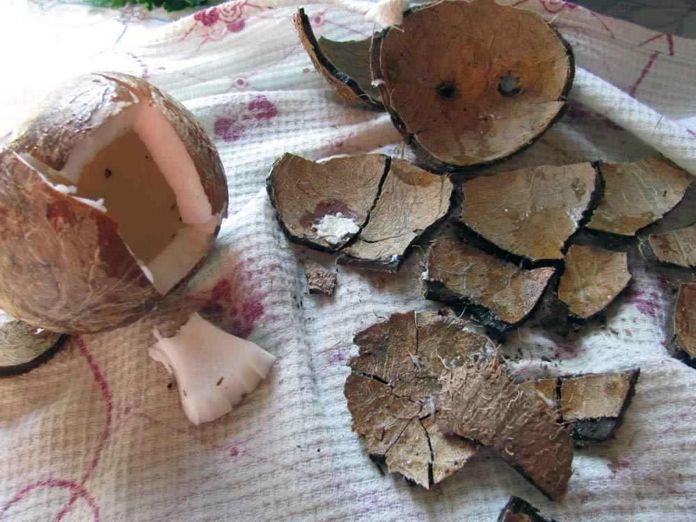Рецепт кокосового масла