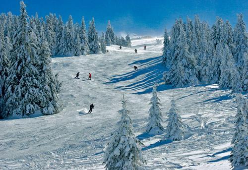 Недорогой отдых зимой 2013-2014 за границей, в Сербии
