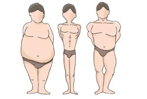 Основные типы телосложения - правила питания и тренировок для каждого