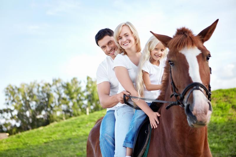 Как найти время для семейного досуга?