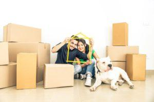 Как переехать и перевезти вещи без потерь?