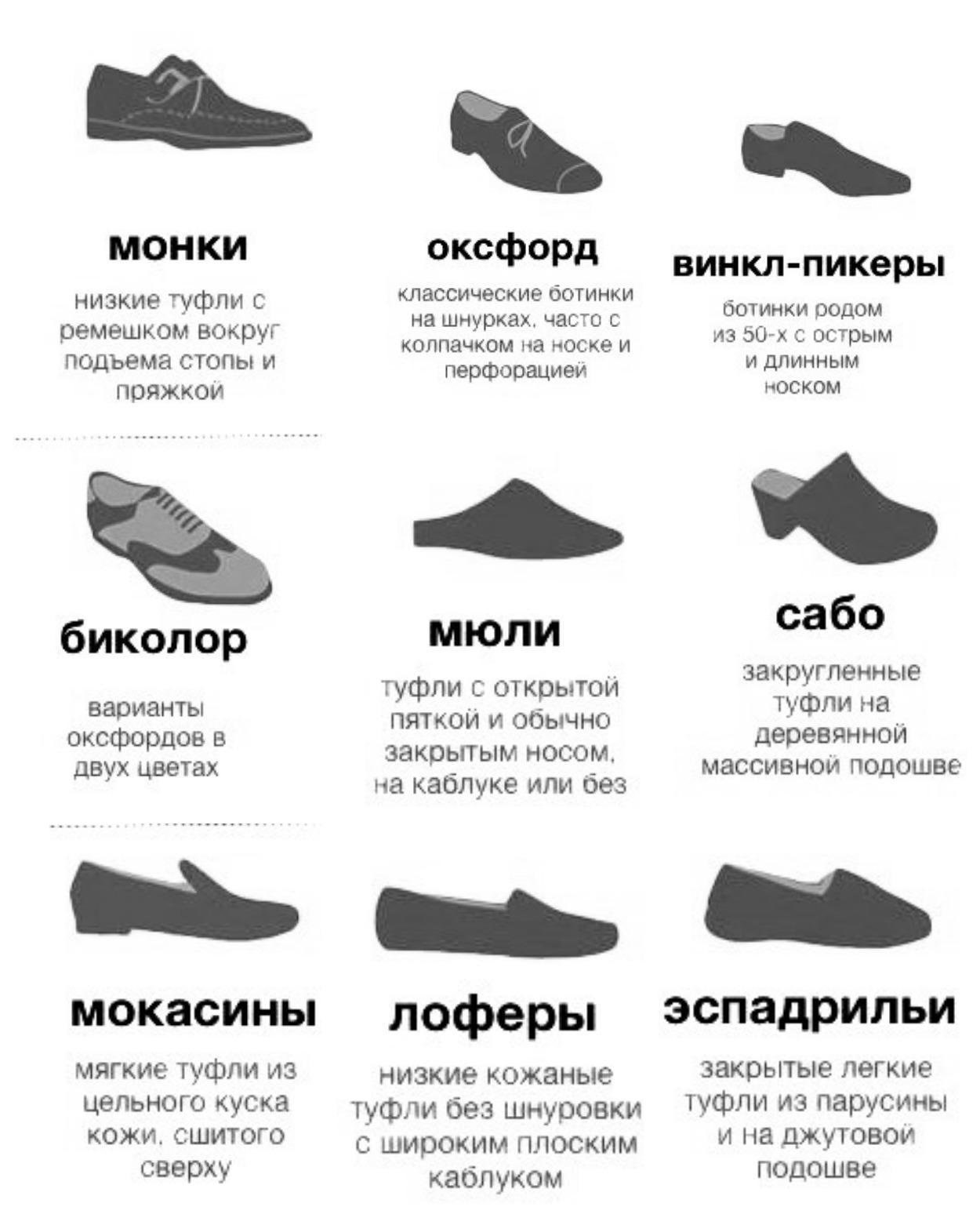 Виды туфель и низких ботинок для женщин