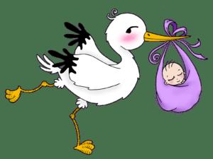 Сроки учета по беременности – как и когда встать на учет, какое пособие положено