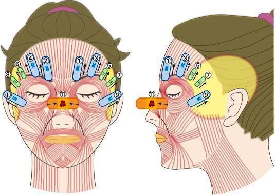 Схема тейпирования лица - порядок накладывания тейпов на лицо