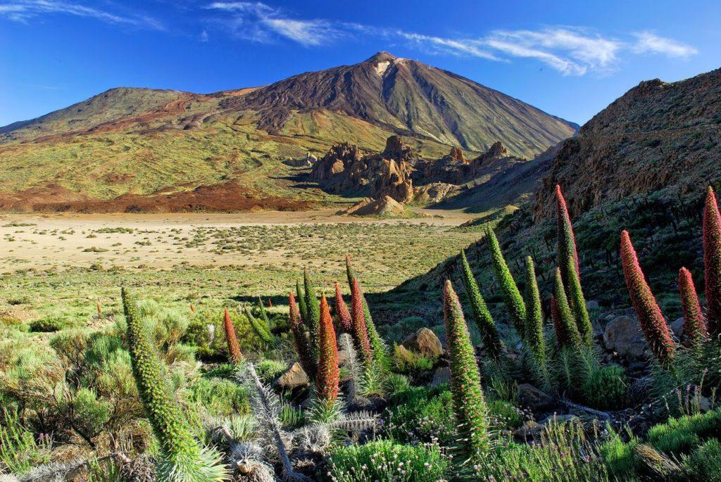 Национальный парк в центре Тенерифе