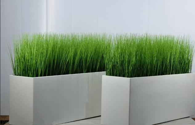 Искусственные зеленые растения