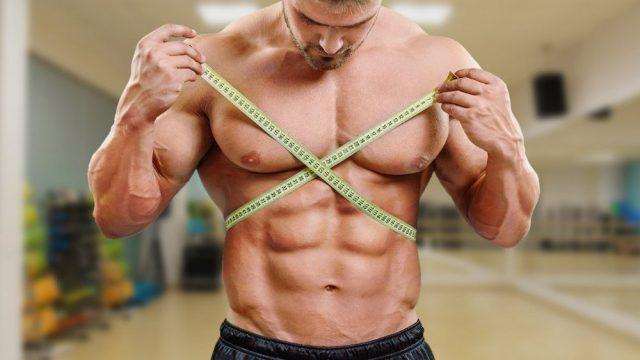 Наращивание мышц и уменьшение жира