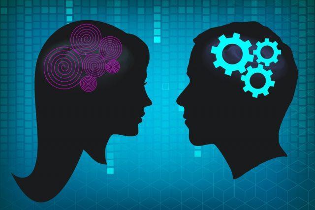 Различия мозга мужчин и женщин