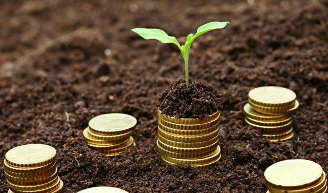 Инвестиции капитала